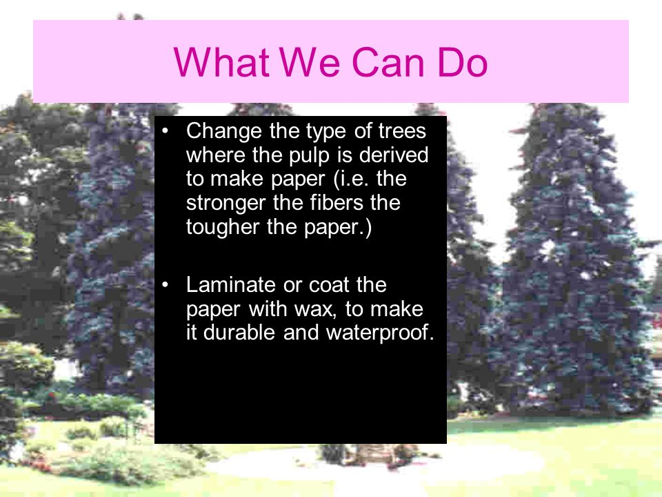 What We Can Do Change the type of trees where the pulp is derived to make paper (i.e. the stronger the fibers the tougher the paper.)