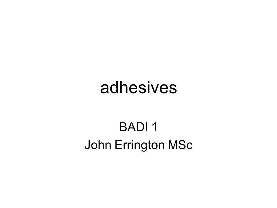 BADI 1 John Errington MSc