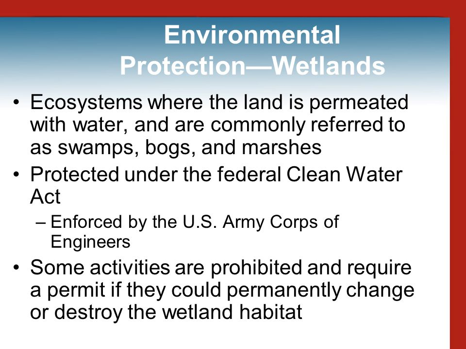 Environmental Protection—Wetlands