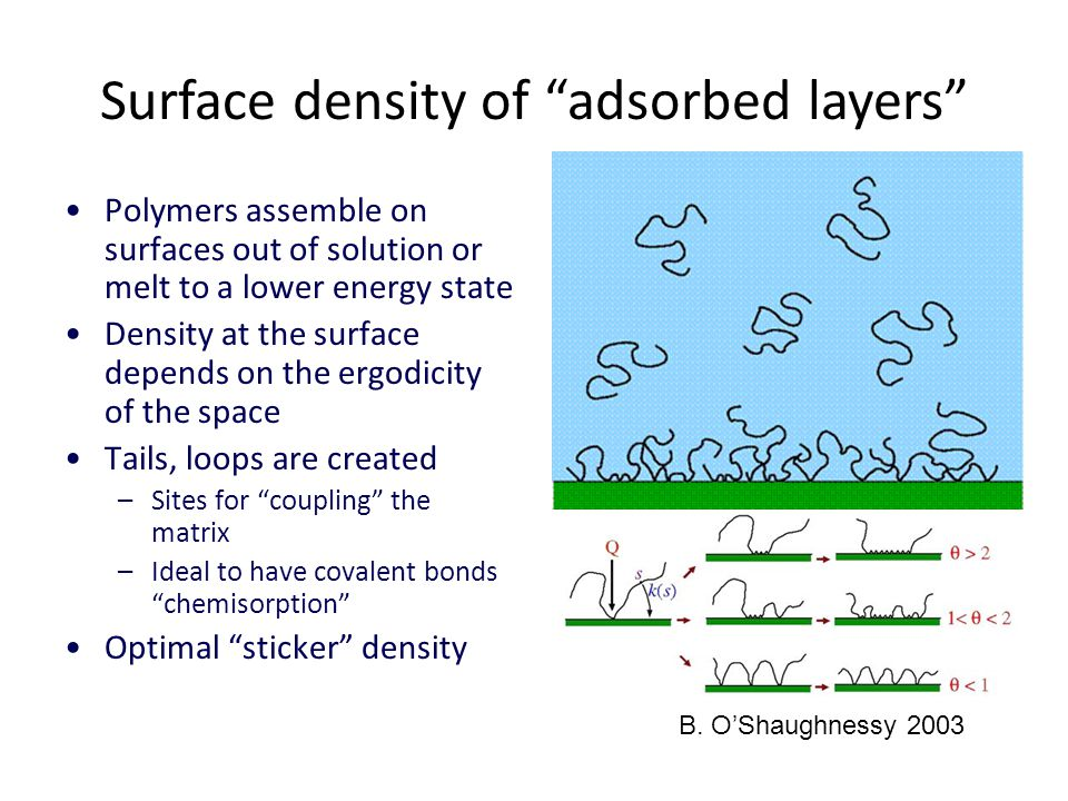 Surface density of adsorbed layers