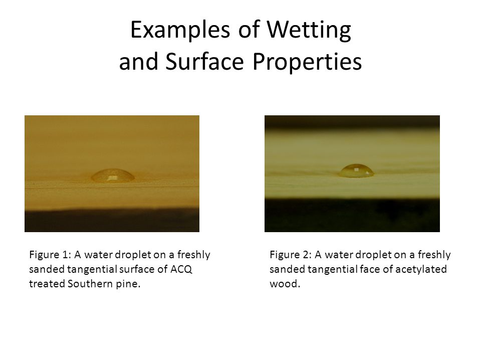 Examples of Wetting and Surface Properties