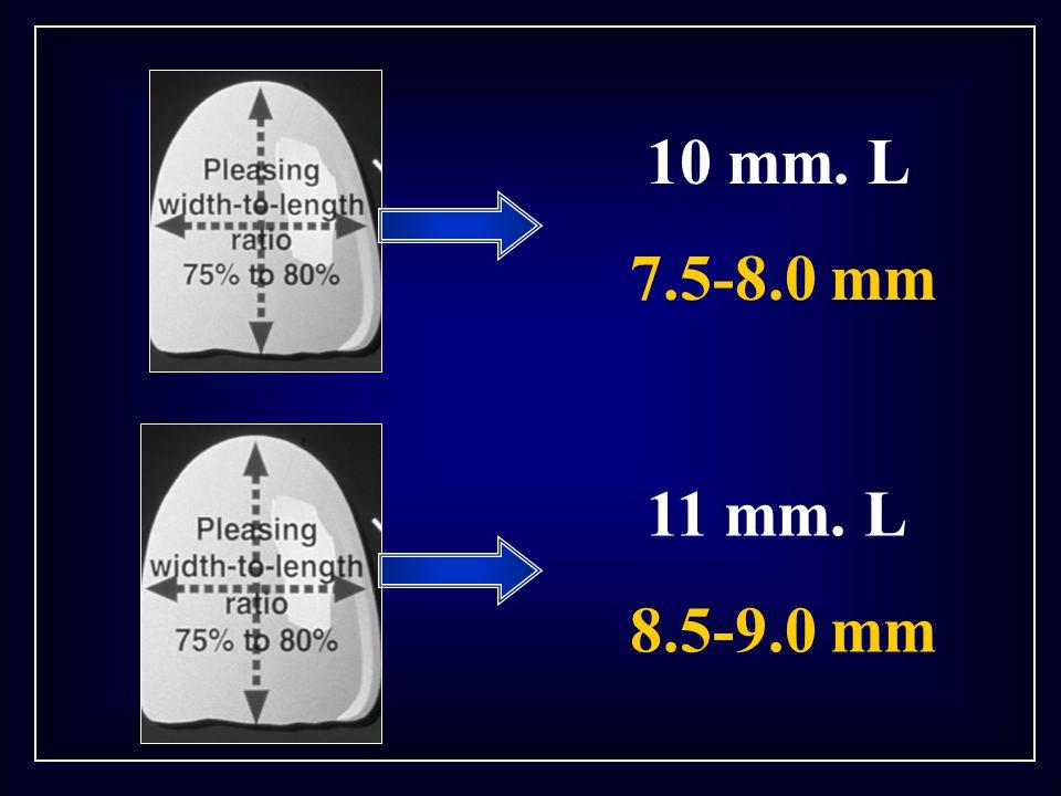 10 mm. L 7.5-8.0 mm 11 mm. L 8.5-9.0 mm