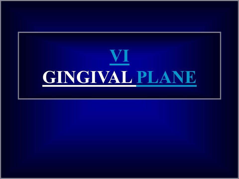 VI GINGIVAL PLANE