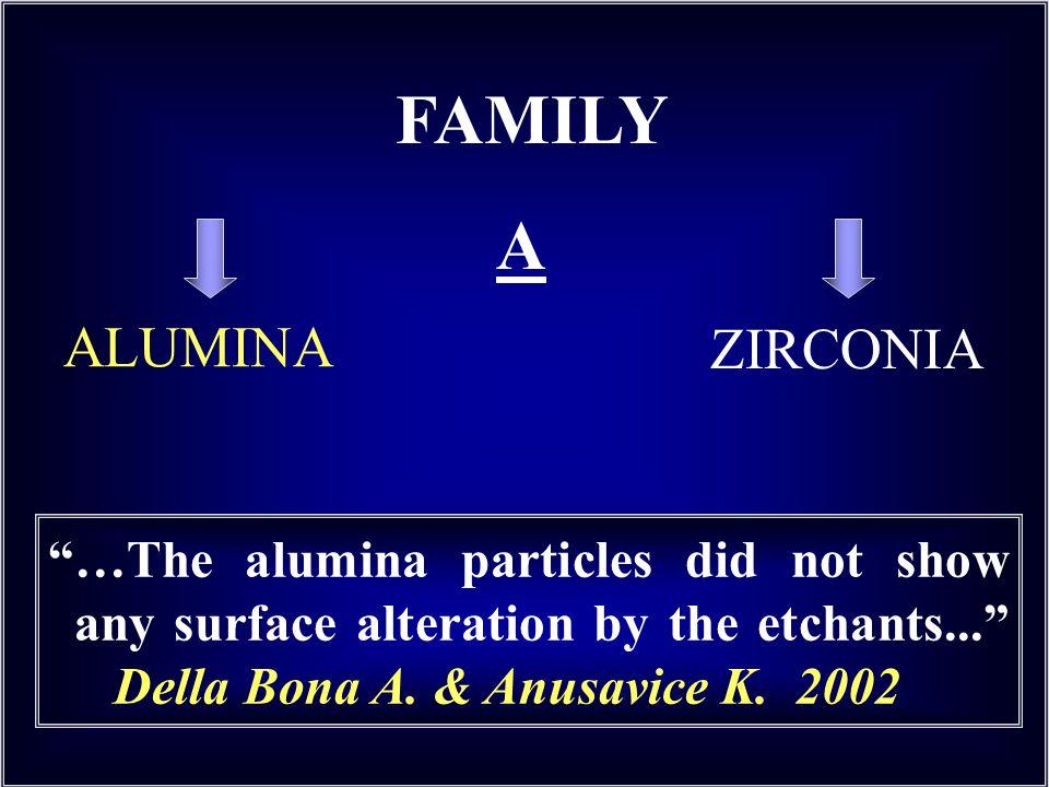 FAMILY A ALUMINA ZIRCONIA
