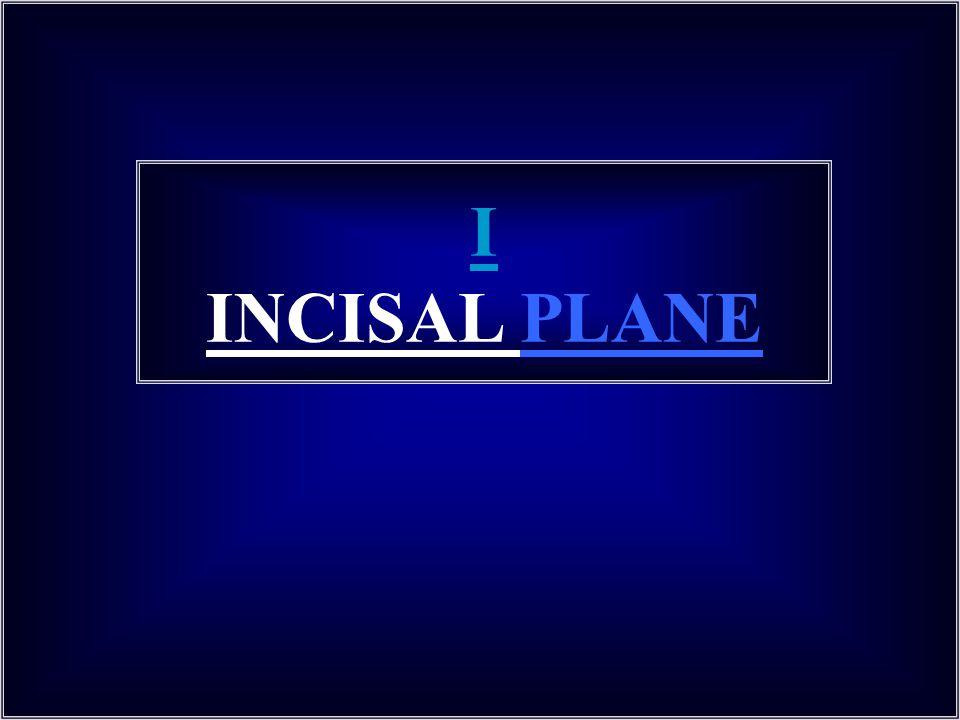 I INCISAL PLANE