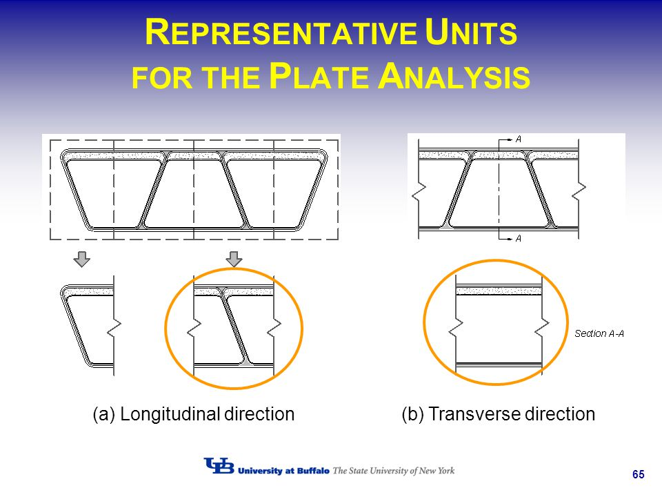 REPRESENTATIVE UNITS FOR THE PLATE ANALYSIS