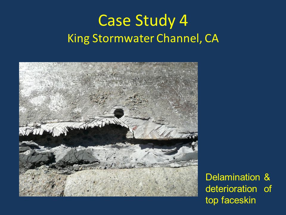 Case Study 4 King Stormwater Channel, CA