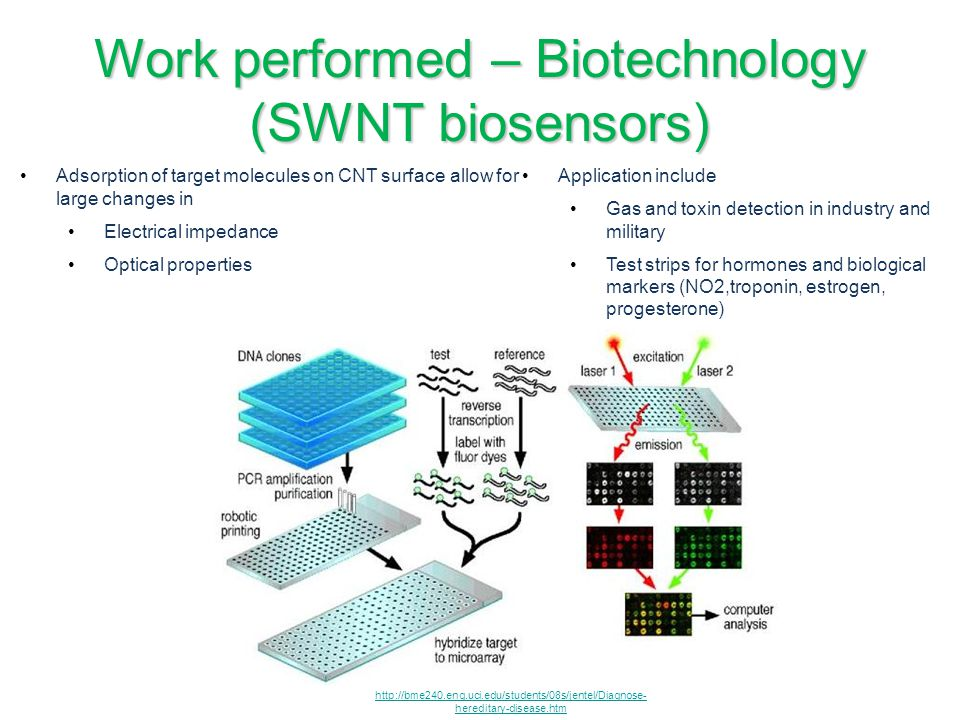 Work performed – Biotechnology (SWNT biosensors)