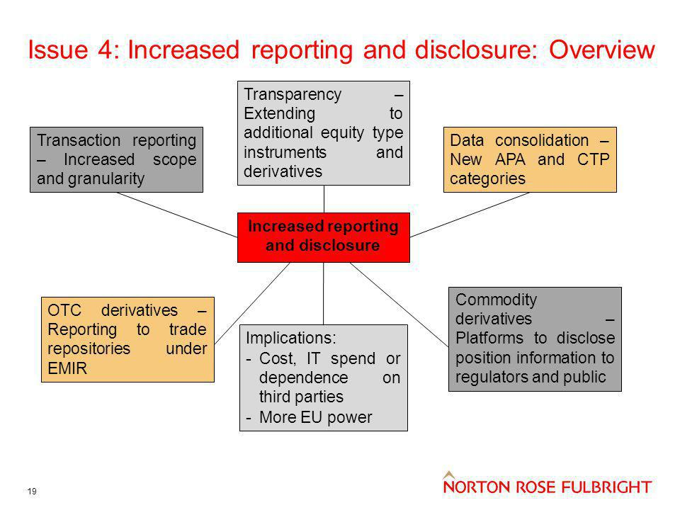 Issue 4: Increased reporting and disclosure: Overview