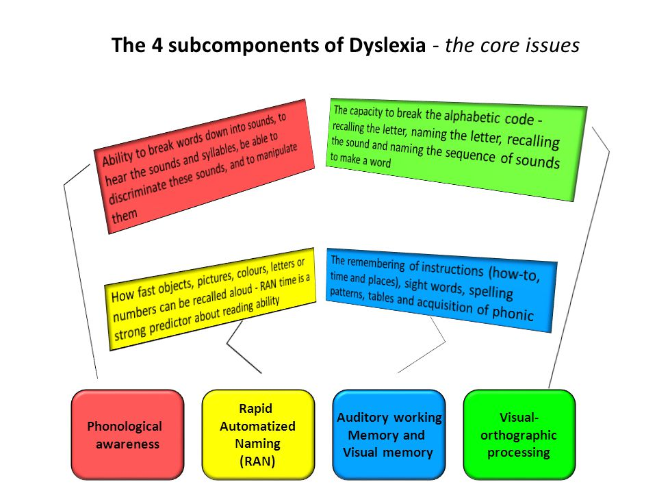 The 4 subcomponents of Dyslexia - the core issues