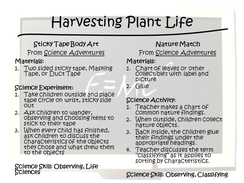 Harvesting Plant Life Sticky Tape Body Art From Science Adventures