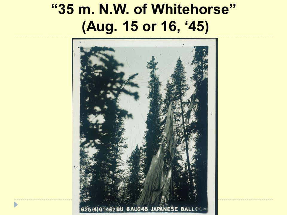 35 m. N.W. of Whitehorse (Aug. 15 or 16, '45)