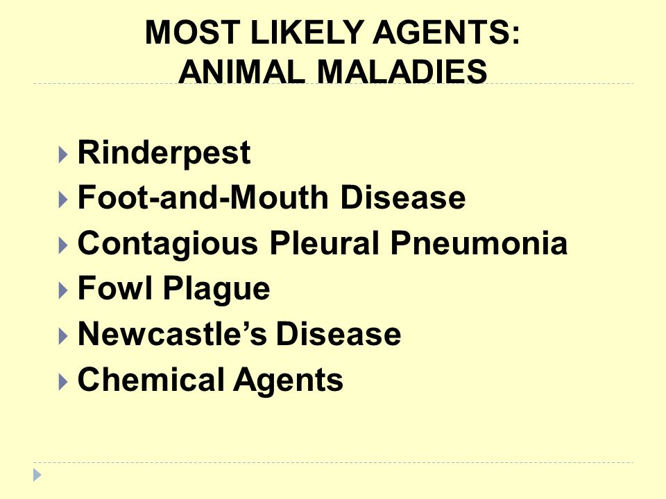 MOST LIKELY AGENTS: ANIMAL MALADIES