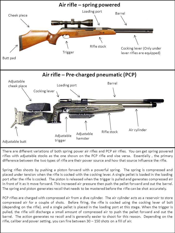 Air rifle – spring powered Air rifle – Pre-charged pneumatic (PCP)