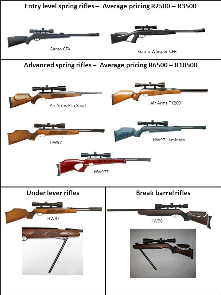 Entry level spring rifles – Average pricing R2500 – R3500
