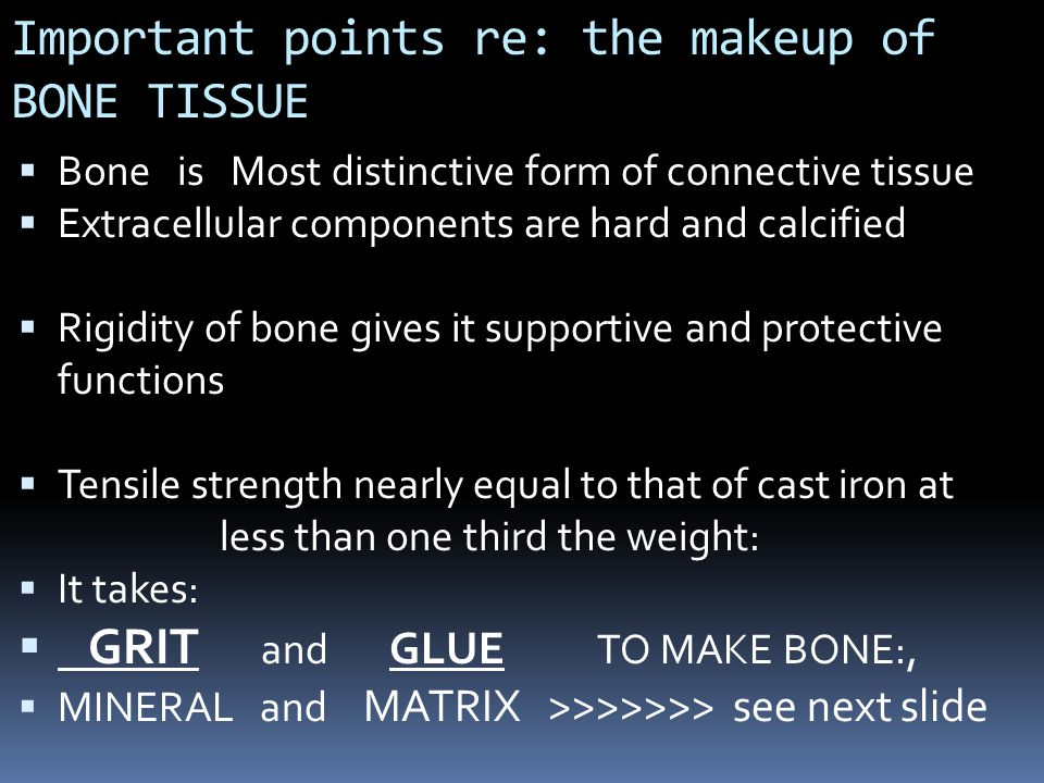 Important points re: the makeup of BONE TISSUE