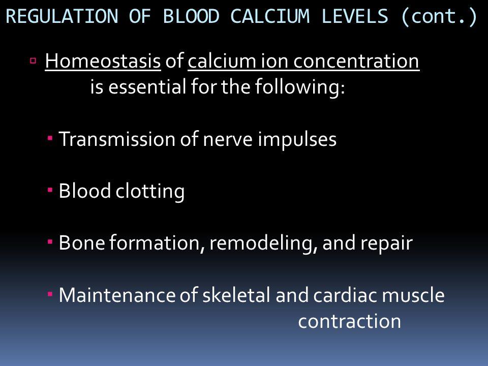 REGULATION OF BLOOD CALCIUM LEVELS (cont.)