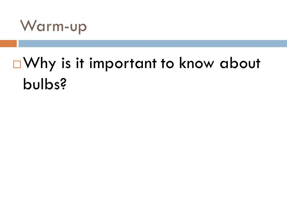 Warm-up Why is it important to know about bulbs