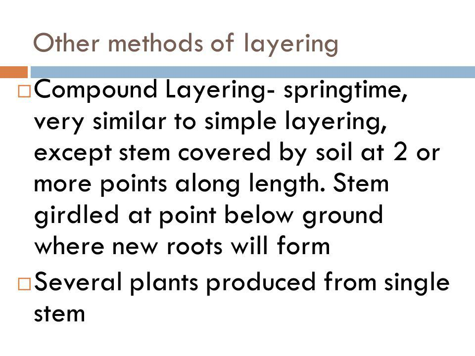 Other methods of layering