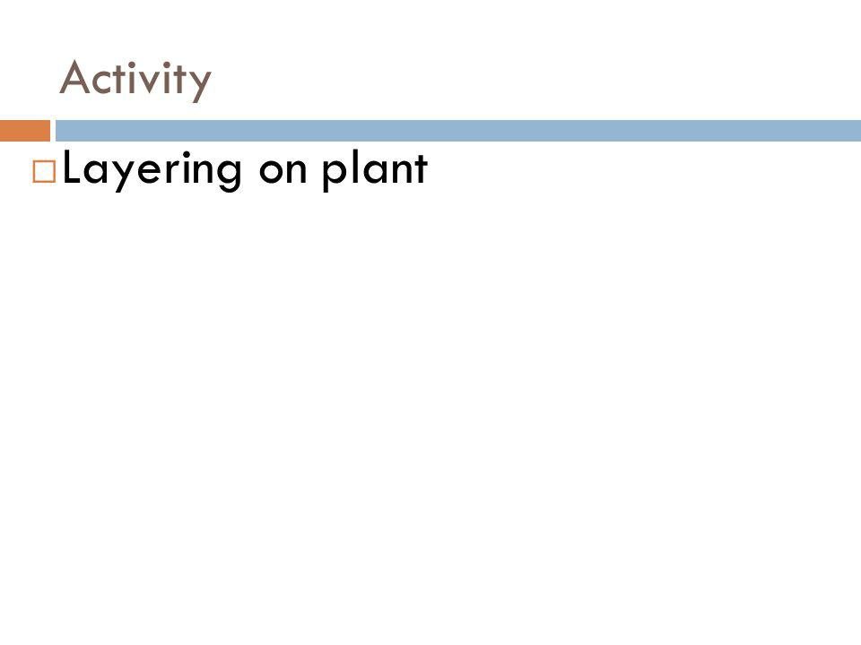 Activity Layering on plant