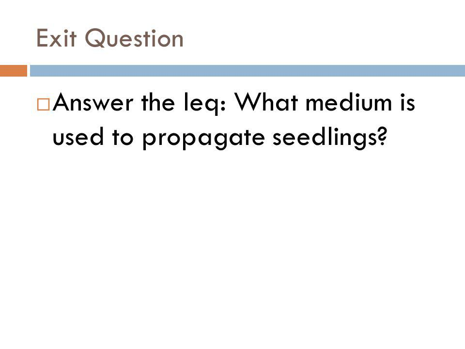 Exit Question Answer the leq: What medium is used to propagate seedlings