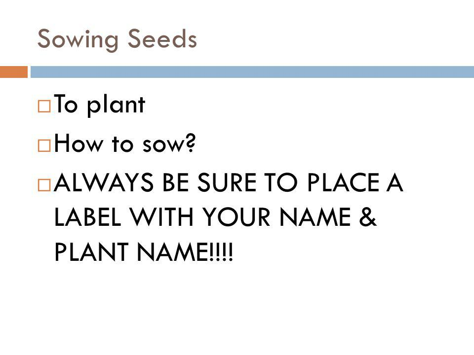 Sowing Seeds To plant How to sow ALWAYS BE SURE TO PLACE A LABEL WITH YOUR NAME & PLANT NAME!!!!