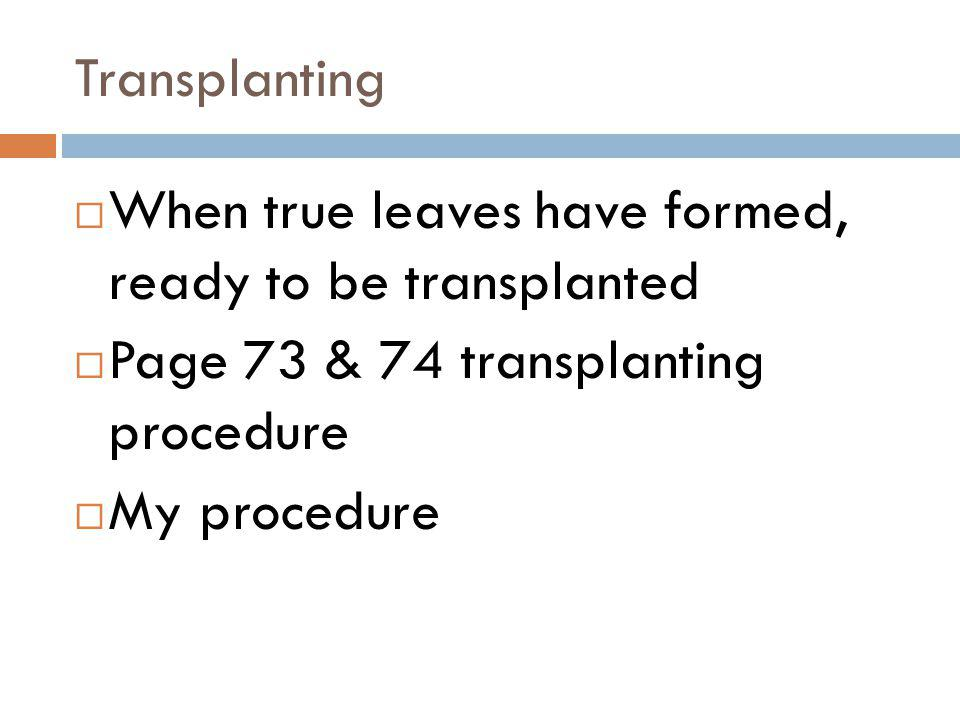 Transplanting When true leaves have formed, ready to be transplanted. Page 73 & 74 transplanting procedure.