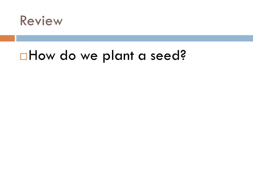 Review How do we plant a seed