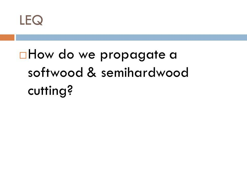 LEQ How do we propagate a softwood & semihardwood cutting