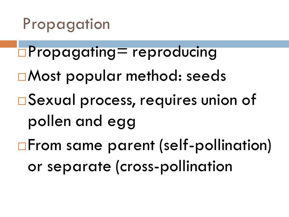 Propagation Propagating= reproducing. Most popular method: seeds. Sexual process, requires union of pollen and egg.