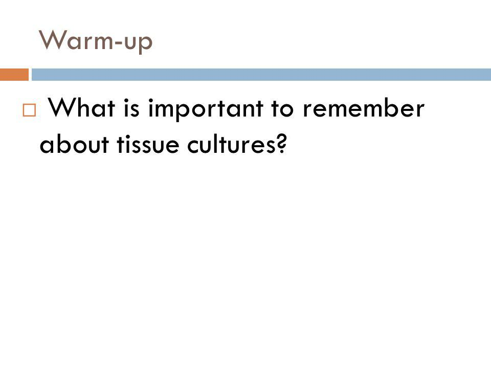Warm-up What is important to remember about tissue cultures