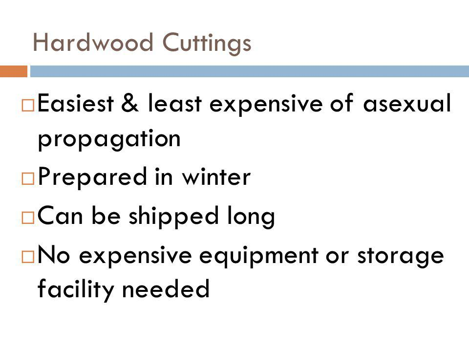 Hardwood Cuttings Easiest & least expensive of asexual propagation. Prepared in winter. Can be shipped long.