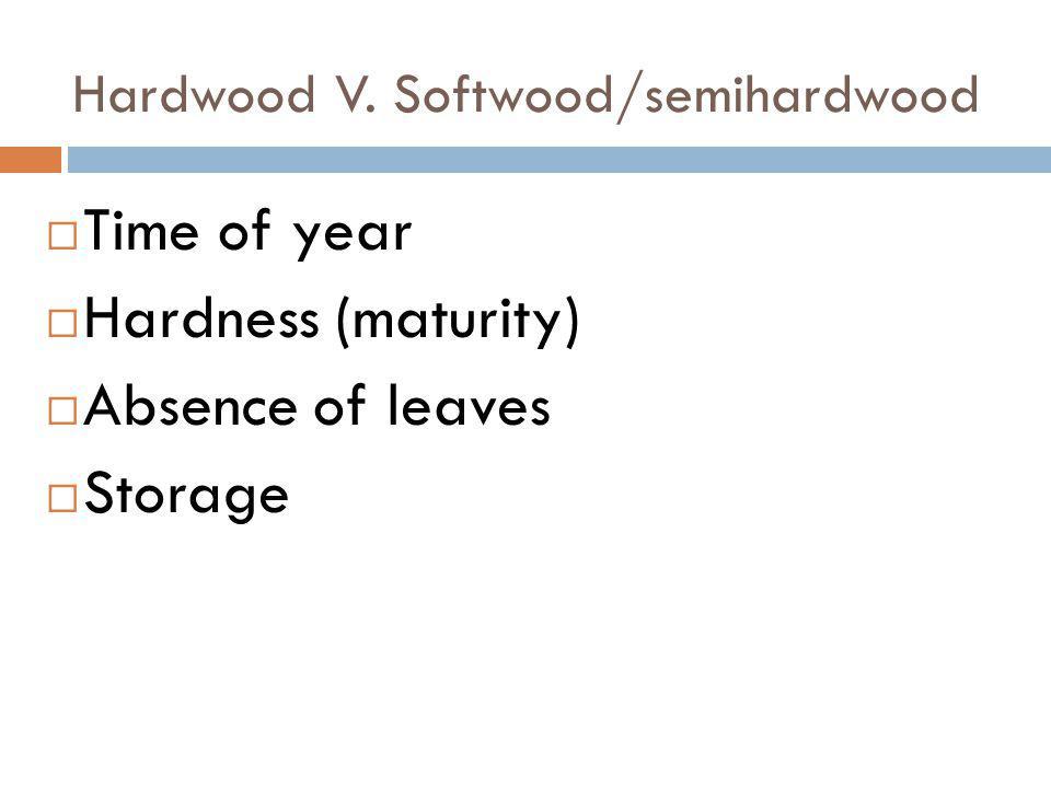 Hardwood V. Softwood/semihardwood