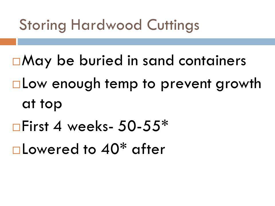 Storing Hardwood Cuttings