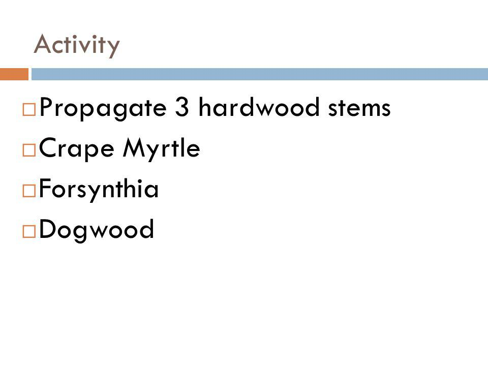 Activity Propagate 3 hardwood stems Crape Myrtle Forsynthia Dogwood