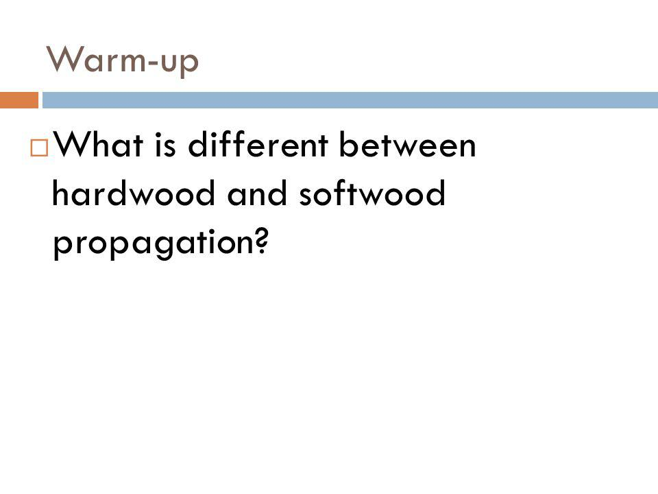 Warm-up What is different between hardwood and softwood propagation