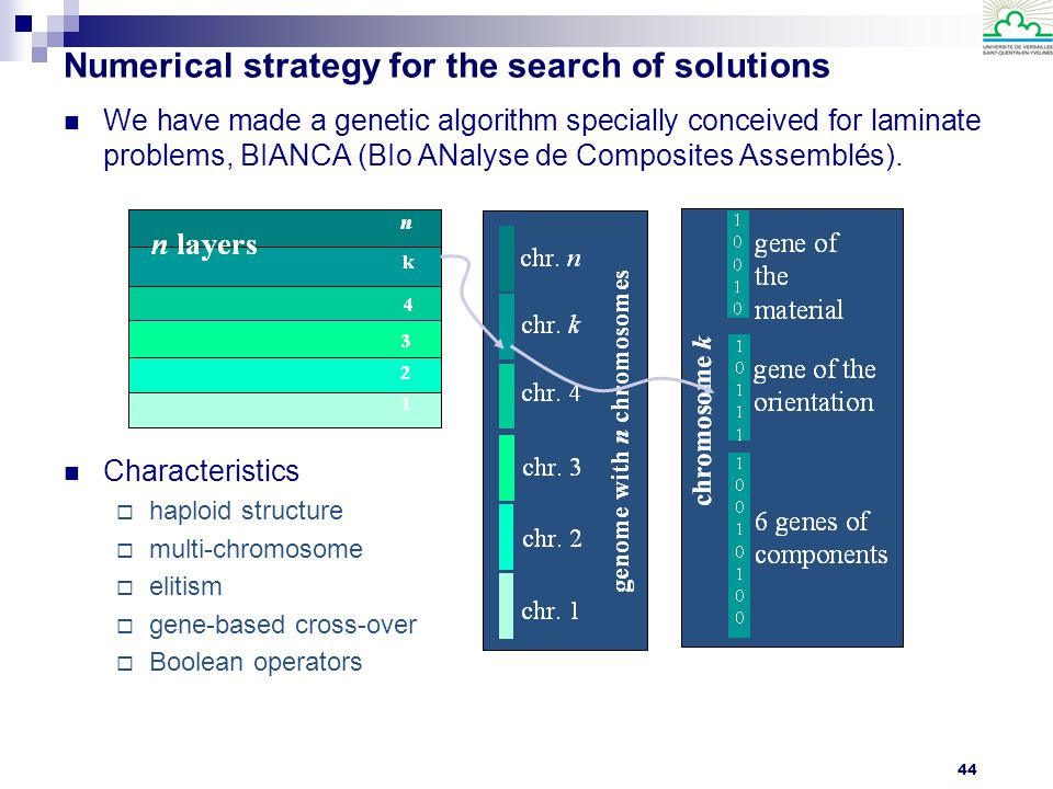 Numerical strategy for the search of solutions