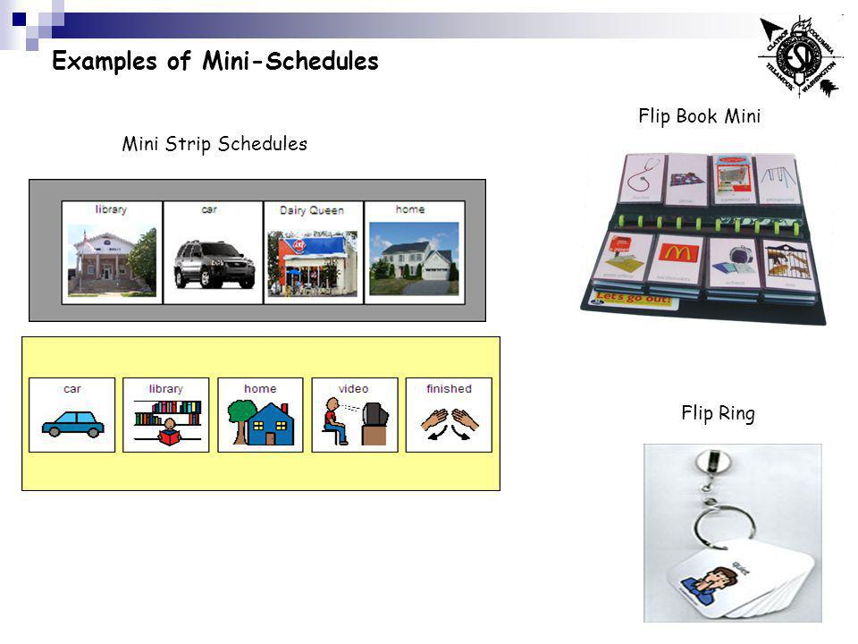 Examples of Mini-Schedules