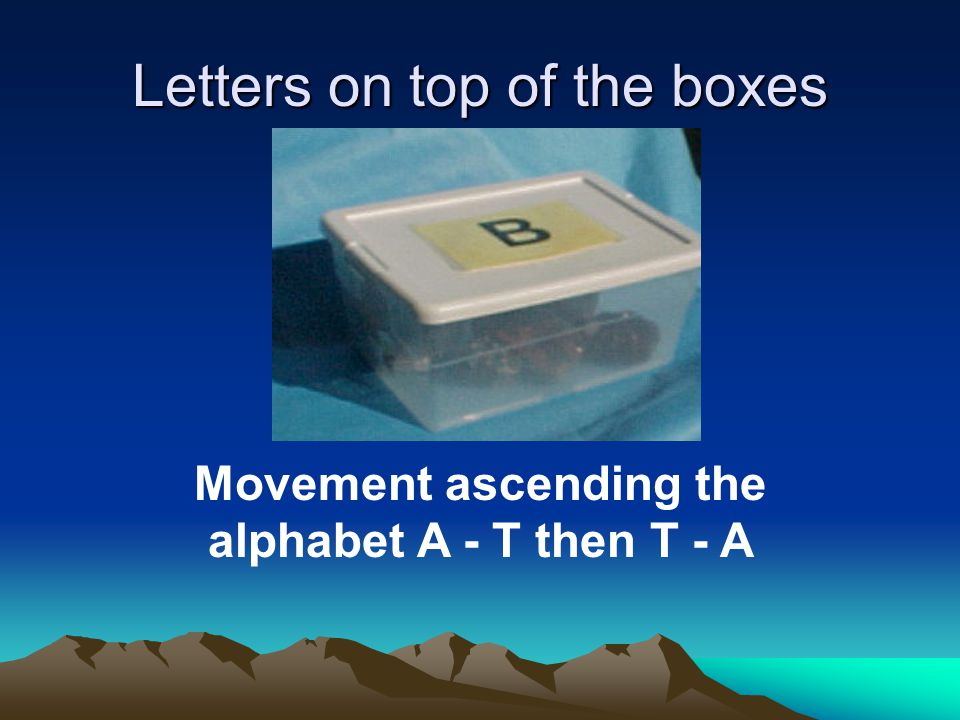 Letters on top of the boxes