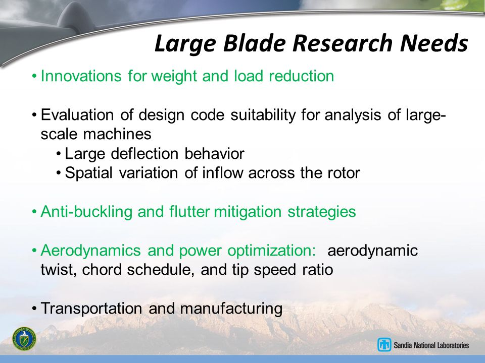 Large Blade Research Needs