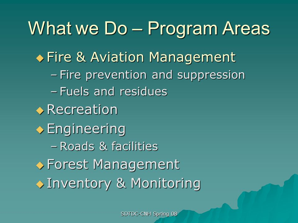 What we Do – Program Areas
