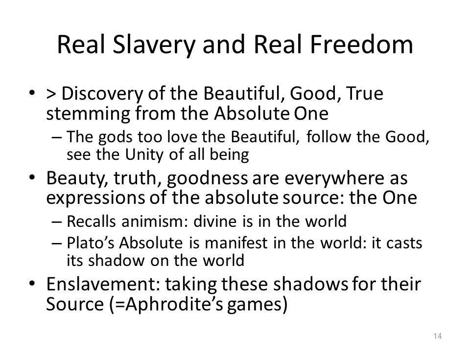 Real Slavery and Real Freedom