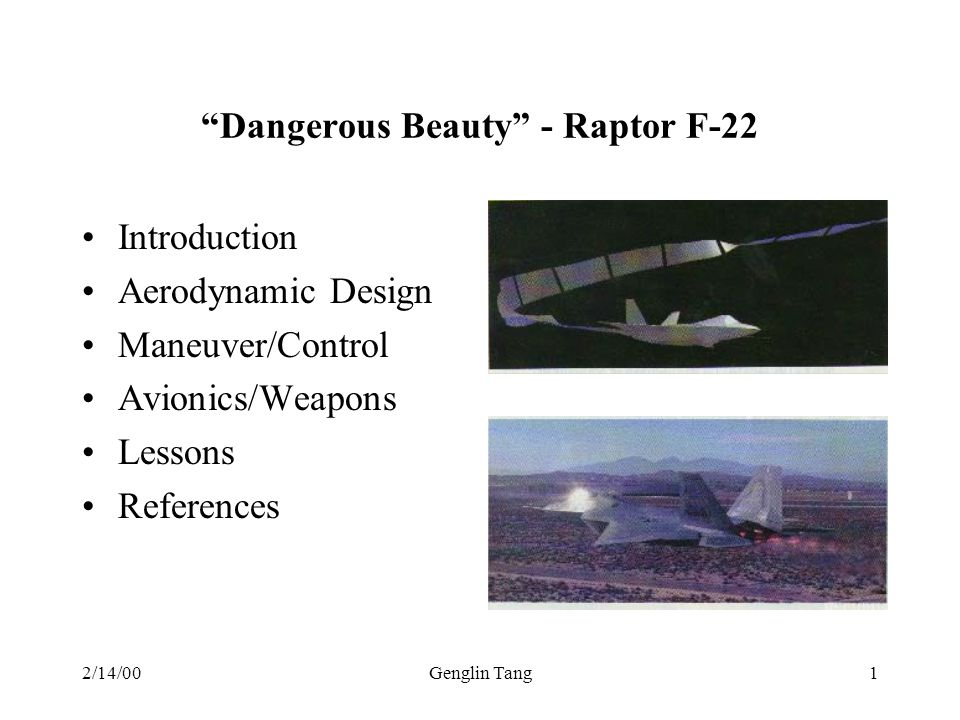 Dangerous Beauty - Raptor F-22