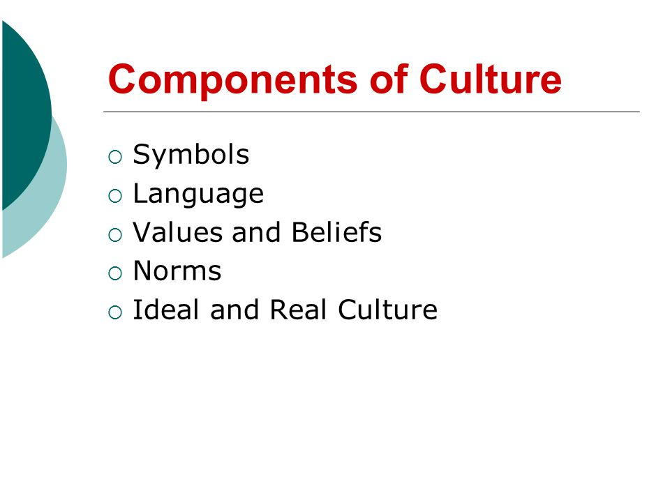 Components of Culture Symbols Language Values and Beliefs Norms