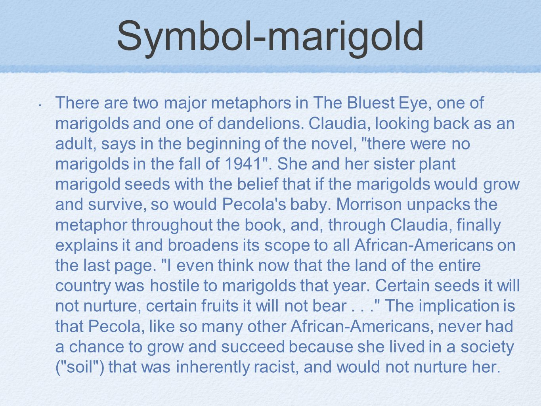 Symbol-marigold