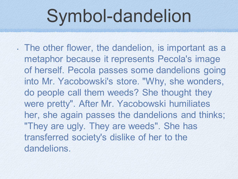 Symbol-dandelion