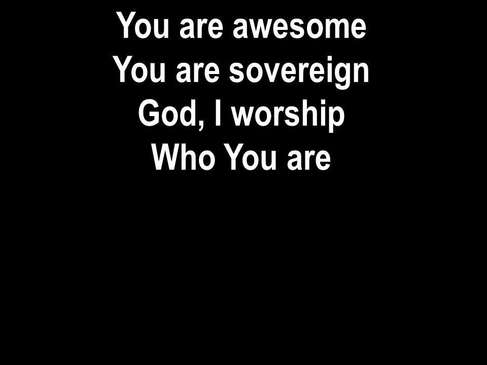 You are awesome You are sovereign God, I worship Who You are