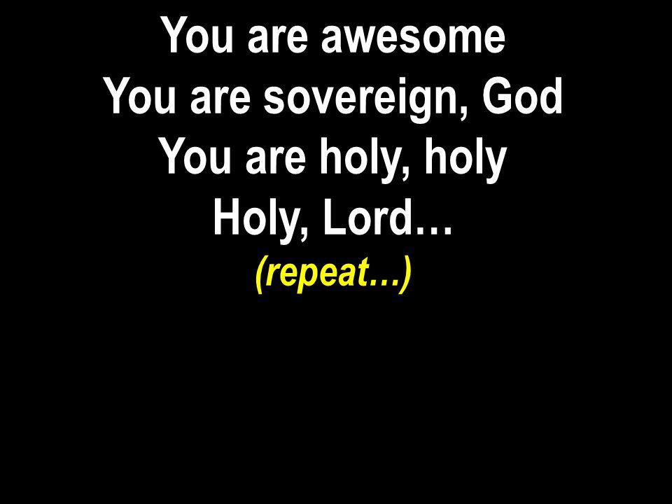 You are awesome You are sovereign, God You are holy, holy Holy, Lord…