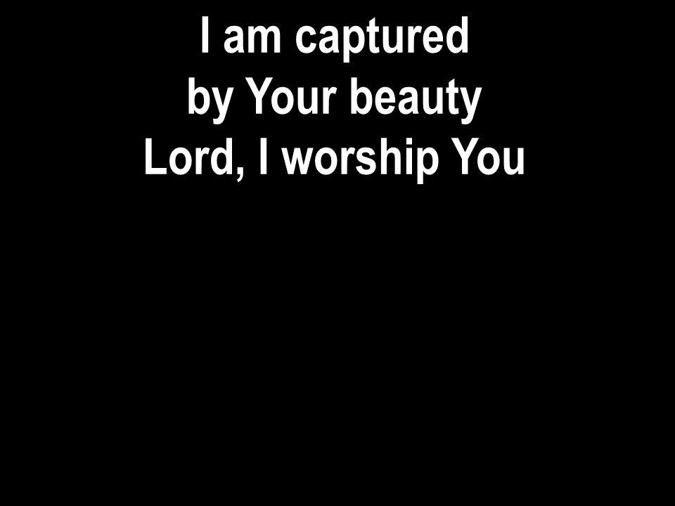 I am captured by Your beauty Lord, I worship You