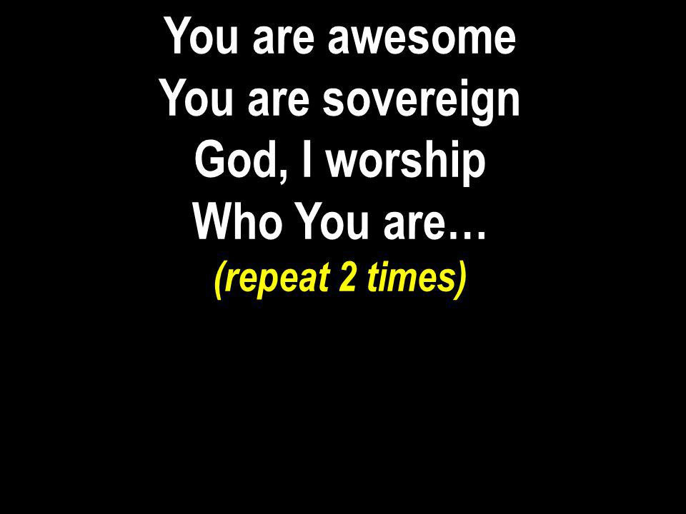 You are awesome You are sovereign God, I worship Who You are…
